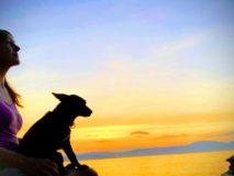 Jak zdolat svůj útes - Koučink asebeřízení svedením paralel